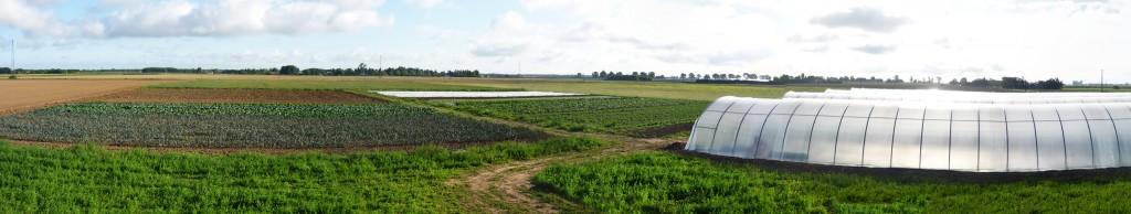 Panorama du 31 août 2014